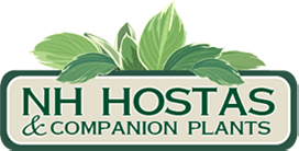 NH Hostas logo