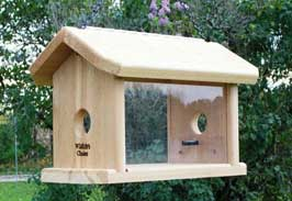 build bluebird feeders